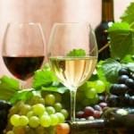 Interesuje cię wino i jak je kupować