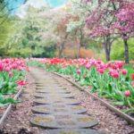Śliczny oraz schludny ogród to zasługa wielu godzin spędzonych  w jego zaciszu w toku pielegnacji.
